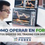 Cómo operar en Forex: primeros pasos para hacer trading en este mercado financiero